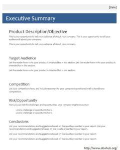 9 Free Sample Executive Summary Templates Printable Samples