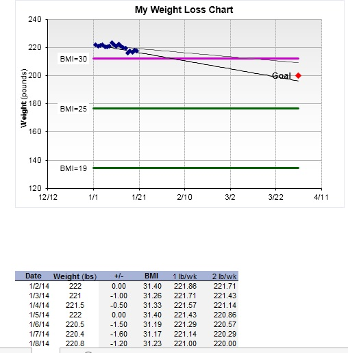 13 free sample weight loss log templates printable samples. Black Bedroom Furniture Sets. Home Design Ideas