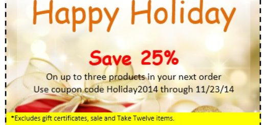 Holiday Coupon Template from www.printablesample.com