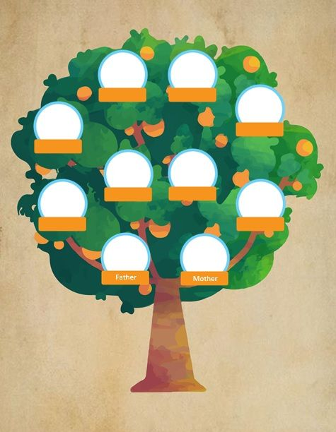 Family-Tree-Diagram-14