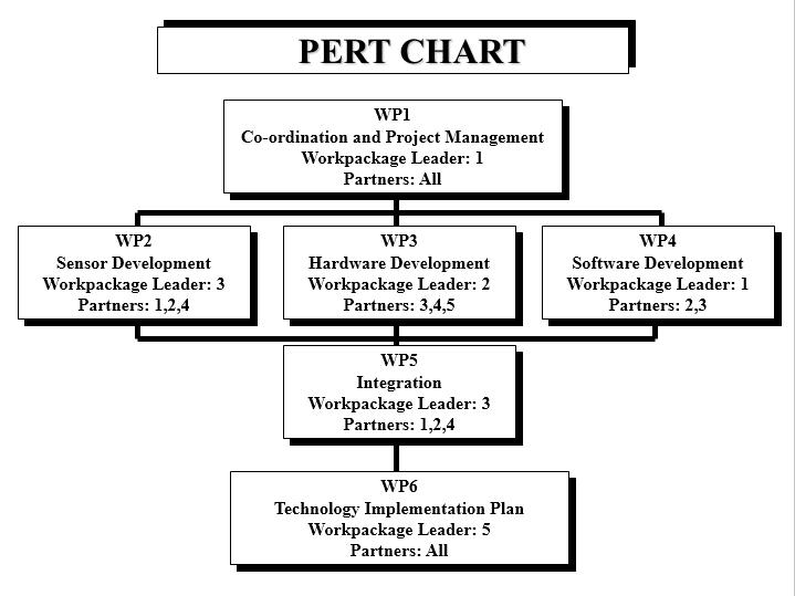 Pert Chart Template 22